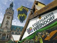 События европейской осени: фестивали вина в Германии